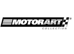 1a32 Motorart - NZG